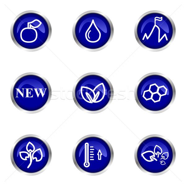 Lucido set icone web 19 blu Foto d'archivio © Fyuriy