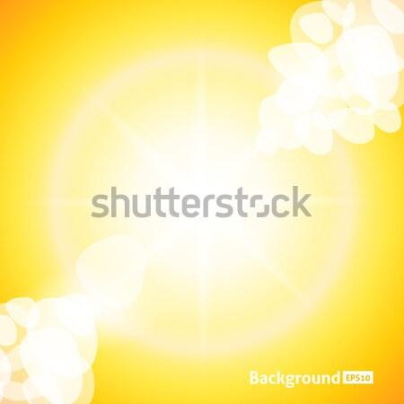 Sun Rays Stock photo © Fyuriy