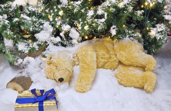 The polar bear is sleeping under the Christmas tree. Stock photo © g215