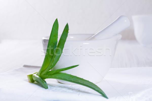 Aloe vera leaves and medical mortar. Stock photo © g215