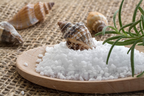 Spa background with sea salt, shells and rosemary Stock photo © g215