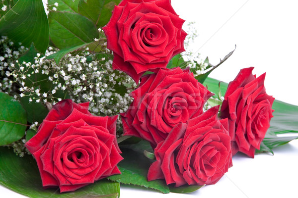 Bouquet of roses Stock photo © g215