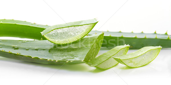 cut aloe leaves on white background  Stock photo © g215