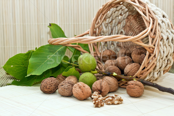 Walnuts with green leaves and immature fruit Stock photo © g215
