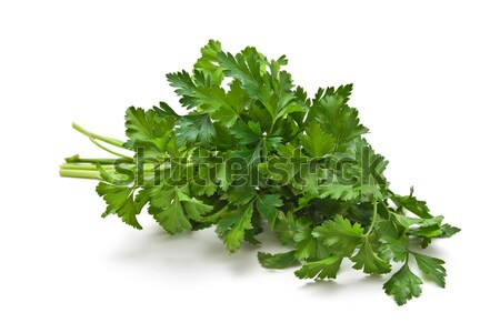 Sprig of parsley Isolated on white background Stock photo © g215