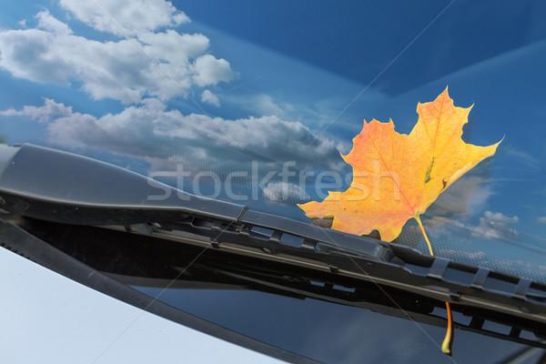 Outono folha carro pára-brisas nuvens cidade Foto stock © g215