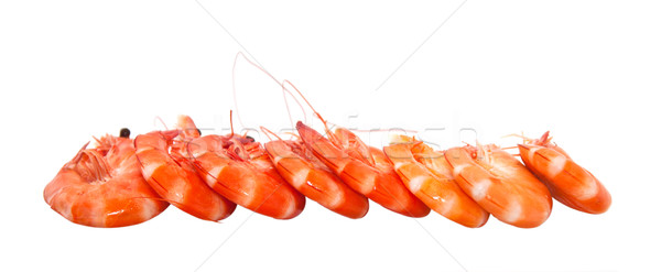 Shrimp on a white background. Stock photo © g215