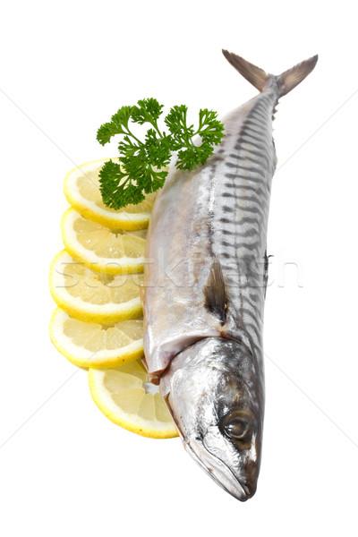 Sózott makréla citrom fehér étel hal Stock fotó © g215