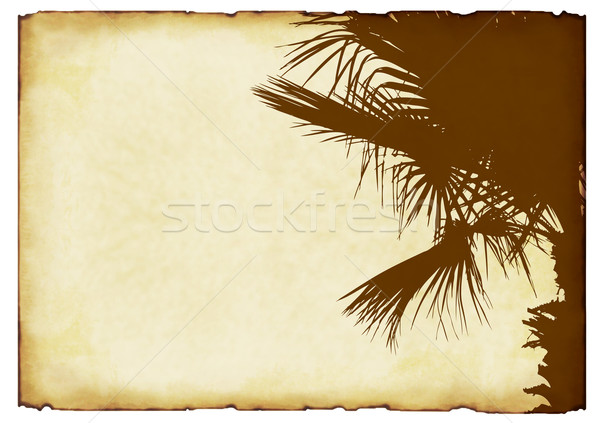 old paper background with elements of ornamentation  Stock photo © g215