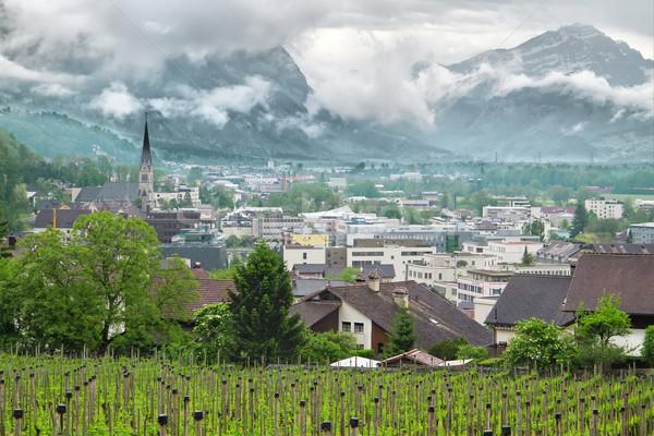 Panoramic view of the Principality of Liechtenstein Stock photo © g215