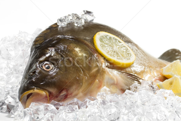 Stock photo: Fresh carp with lemon on ice