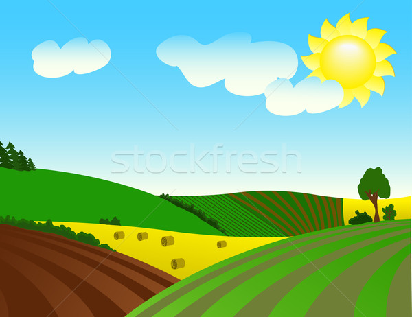 Environmentally prosperous rural landscape.  Stock photo © g215