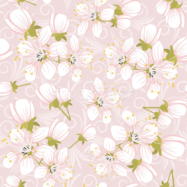 Seamless pattern with cherry blossoms  Stock photo © g215