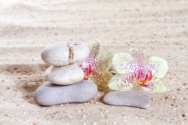 Orkide zen taşlar kum plaj çiçek Stok fotoğraf © g215