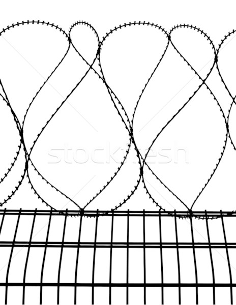 barbed wire fence  Stock photo © g215