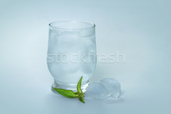 Tonic with ice and mint Stock photo © g215