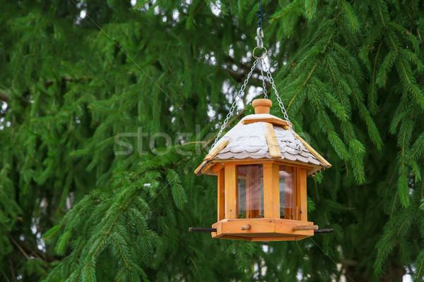 Bird feeders in the winter. Stock photo © g215