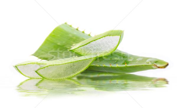 Cut алоэ листьев отражение воды зеленый Сток-фото © g215