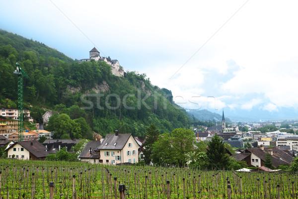 Panoramica view Liechtenstein città panorama blu Foto d'archivio © g215