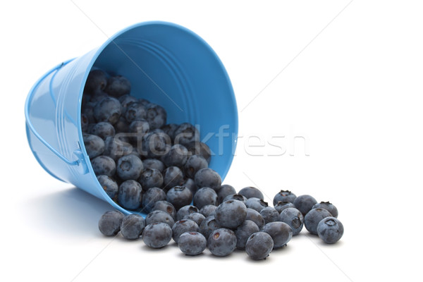 Blueberries in a bucket on a white background Stock photo © g215