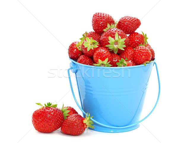 Strawberries in a bucket on a white background. Stock photo © g215
