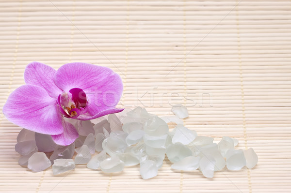 Pink orchid and bath salts. Spa set Stock photo © g215