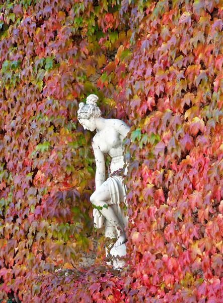 Sculptuur vrouw muur Rood plant Stockfoto © g215