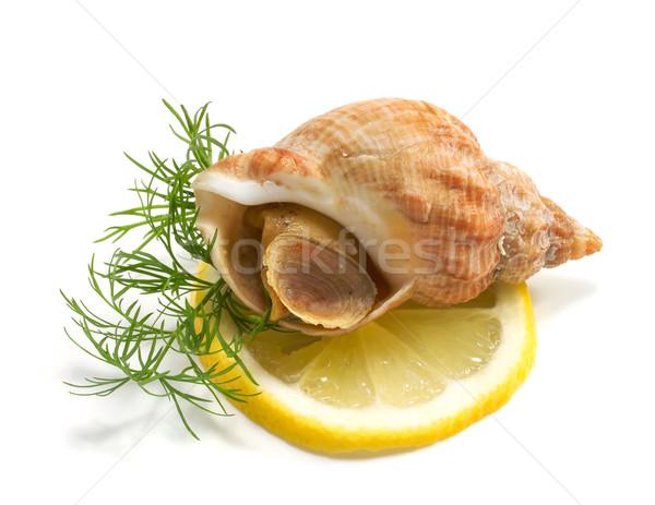 Citrom fehér tenger piac eszik étel Stock fotó © g215