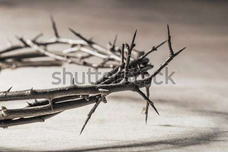 Crown of thorns with blood dripping. Christian concept of suffer Stock photo © g215