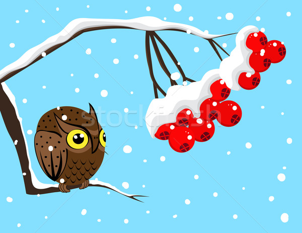Winter image with red berries and owl Stock photo © g215