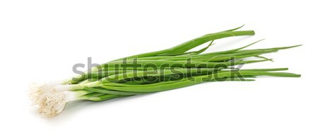 Chives on a white background Stock photo © g215
