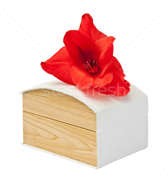 Gift box with flower gladiolus. Stock photo © g215