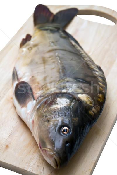 Spiegel karper diner vissen vers Stockfoto © g215