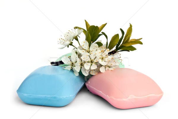 Stock photo: The pieces of soap with a sprig of cherry blossoms.