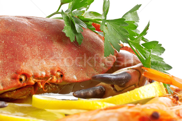 Crab  on a platter Stock photo © g215