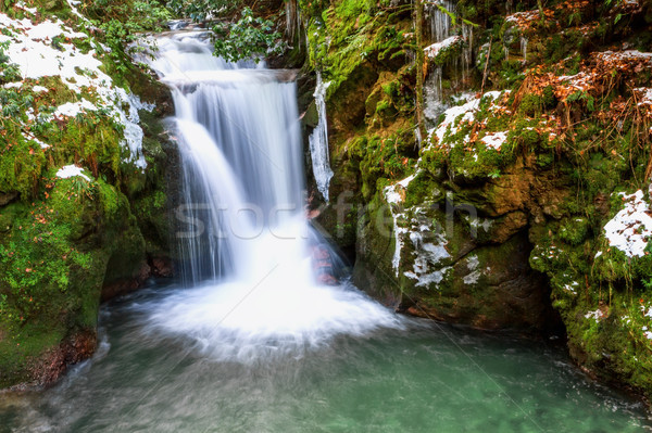Forest waterfall in Baden-Baden. Europe, Germany. Stock photo © g215