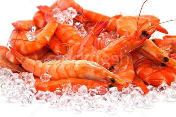 льда рыбы солнце морем оранжевый Сток-фото © g215