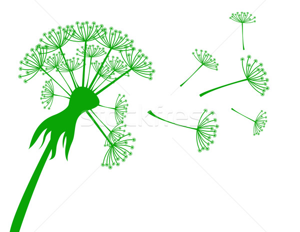 Afiş karahindiba çiçekler ışık yeşil hayat Stok fotoğraf © g215