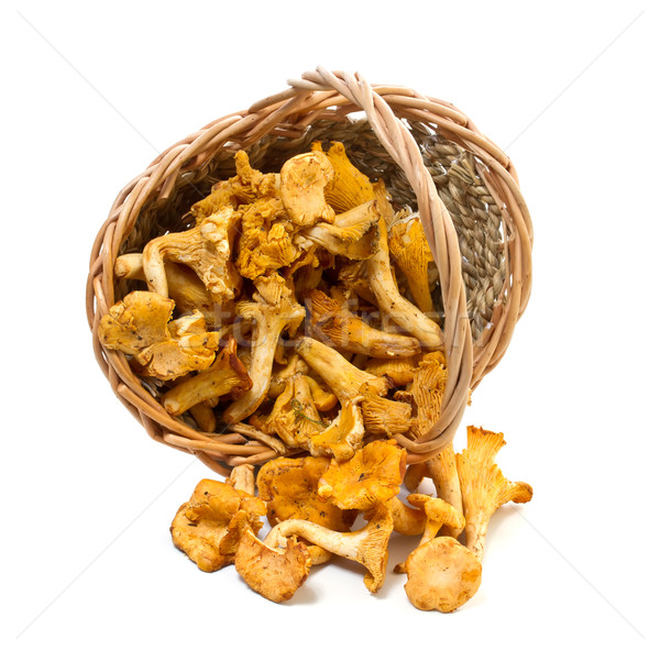 Chanterelles in a basket on a white background Stock photo © g215