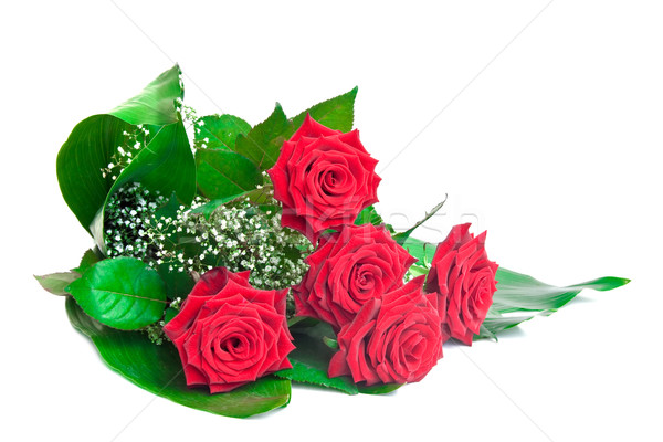 Bouquet of red roses isolated on white background. Stock photo © g215