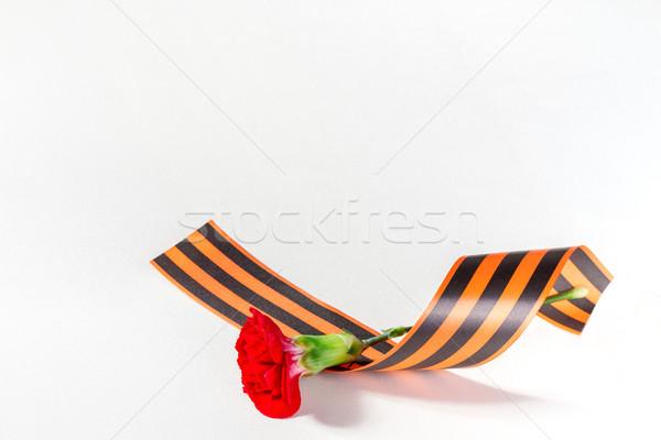 Kırmızı karanfil şerit çiçek sevmek arka plan Stok fotoğraf © g215