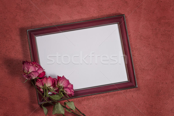Vintage background with frame for photo and dry roses Stock photo © g215