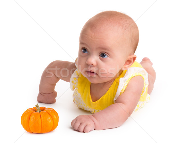 Baby girl with a small pumpkin isolated on a white background Stock photo © gabes1976