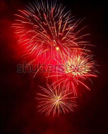 Fireworks Stock photo © gabes1976