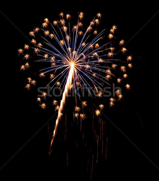 Single Burst of Fireworks Isolated on Black Stock photo © gabes1976