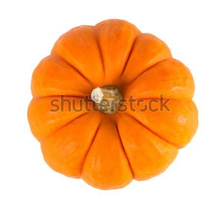 Klein oranje pompoen geïsoleerd witte achtergrond Stockfoto © gabes1976