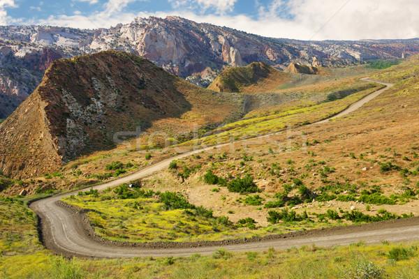 каньон дороги Юта красивой живописный мнение Сток-фото © gabes1976