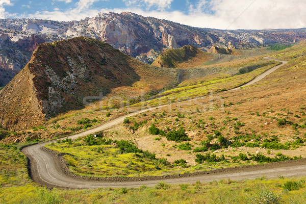 Canyon weg Utah mooie schilderachtig Stockfoto © gabes1976
