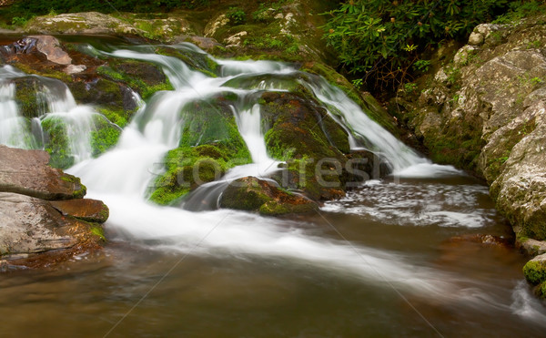Smooth cascades near Cades Cove at the Great Smoky Mountains National Park. Stock photo © gabes1976