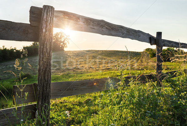 Stock photo: Field and Fence